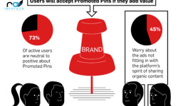 Pinterest-ads-and-users-utilization-study-2014-main-pic